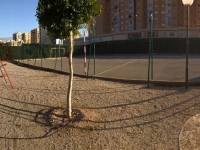 Resale - Apartment / Flat - Alicante City - Alicante - Poligono Babel