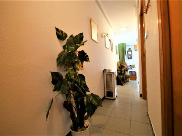 Apartment / Flat - Resale - Torrevieja - Playa del Cura