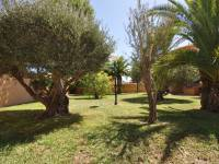 Resale - Detached house - Torrevieja - San Luis